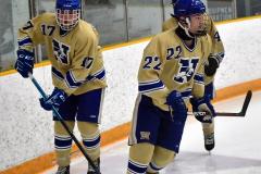CIACT D3 Ice Hockey; #8 Newtown 7 vs. #9 Wilton 2 - Photo # 074