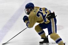 CIACT D3 Ice Hockey; #8 Newtown 7 vs. #9 Wilton 2 - Photo # 1024