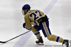 CIACT D3 Ice Hockey; #8 Newtown 7 vs. #9 Wilton 2 - Photo # 1025