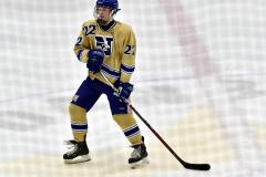 CIACT D3 Ice Hockey; #8 Newtown 7 vs. #9 Wilton 2 - Photo # 1366