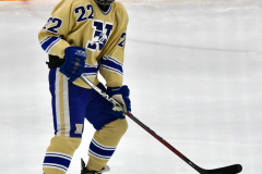 CIACT D3 Ice Hockey; #8 Newtown 7 vs. #9 Wilton 2 - Photo # 1448
