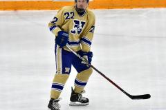 CIACT D3 Ice Hockey; #8 Newtown 7 vs. #9 Wilton 2 - Photo # 1449