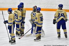 CIACT D3 Ice Hockey; #8 Newtown 7 vs. #9 Wilton 2 - Photo # 1479