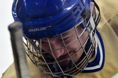 CIACT D3 Ice Hockey; #8 Newtown 7 vs. #9 Wilton 2 - Photo # 1663