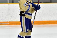 CIACT D3 Ice Hockey; #8 Newtown 7 vs. #9 Wilton 2 - Photo # 1692