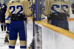 CIACT D3 Ice Hockey; #8 Newtown 7 vs. #9 Wilton 2 - Photo # 1719