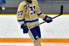 CIACT D3 Ice Hockey; #8 Newtown 7 vs. #9 Wilton 2 - Photo # 1759