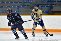 CIACT D3 Ice Hockey; #8 Newtown 7 vs. #9 Wilton 2 - Photo # 1760