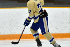 CIACT D3 Ice Hockey; #8 Newtown 7 vs. #9 Wilton 2 - Photo # 1764