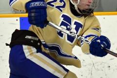 CIACT D3 Ice Hockey; #8 Newtown 7 vs. #9 Wilton 2 - Photo # 1856