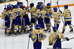 CIACT D3 Ice Hockey; #8 Newtown 7 vs. #9 Wilton 2 - Photo # 2218