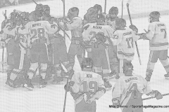 CIACT D3 Ice Hockey; #8 Newtown 7 vs. #9 Wilton 2 - Photo # 2219