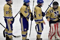 CIACT D3 Ice Hockey; #8 Newtown 7 vs. #9 Wilton 2 - Photo # 2230