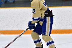 CIACT D3 Ice Hockey; #8 Newtown 7 vs. #9 Wilton 2 - Photo # 289
