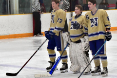 CIACT D3 Ice Hockey; #8 Newtown 7 vs. #9 Wilton 2 - Photo # 444