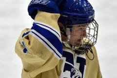 CIACT D3 Ice Hockey; #8 Newtown 7 vs. #9 Wilton 2 - Photo # 577