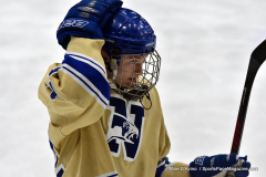 CIACT D3 Ice Hockey; #8 Newtown 7 vs. #9 Wilton 2 - Photo # 578