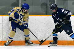 CIACT D3 Ice Hockey; #8 Newtown 7 vs. #9 Wilton 2 - Photo # 602