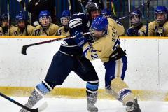 CIACT D3 Ice Hockey; #8 Newtown 7 vs. #9 Wilton 2 - Photo # 858