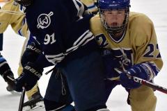 CIACT D3 Ice Hockey; #8 Newtown 7 vs. #9 Wilton 2 - Photo # 946