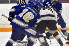 CIACT Ice Hockey D3 QFs; #1 Hand 5 vs. #8 Newtown 0 - Photo # 389