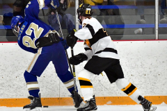 CIACT Ice Hockey D3 QFs; #1 Hand 5 vs. #8 Newtown 0 - Photo # 594