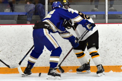 CIACT Ice Hockey D3 QFs; #1 Hand 5 vs. #8 Newtown 0 - Photo # 598