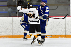 CIACT Ice Hockey D3 QFs; #1 Hand 5 vs. #8 Newtown 0 - Photo # 606
