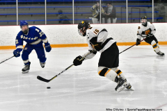 CIACT Ice Hockey D3 QFs; #1 Hand 5 vs. #8 Newtown 0 - Photo # 945