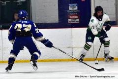Gallery CIAC Ice Hockey; Northeastern 4 vs. Newtown 3 - Photo # 1042