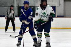 Gallery CIAC Ice Hockey; Northeastern 4 vs. Newtown 3 - Photo # 1095