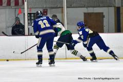 Gallery CIAC Ice Hockey; Northeastern 4 vs. Newtown 3 - Photo # 434