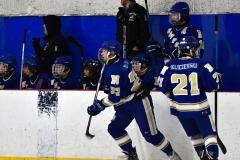 Gallery CIAC Ice Hockey; Northeastern 4 vs. Newtown 3 - Photo # 584