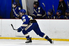 Gallery CIAC Ice Hockey; Northeastern 4 vs. Newtown 3 - Photo # 585