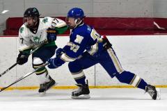 Gallery CIAC Ice Hockey; Northeastern 4 vs. Newtown 3 - Photo # 755