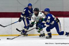 Gallery CIAC Ice Hockey; Northeastern 4 vs. Newtown 3 - Photo # 756