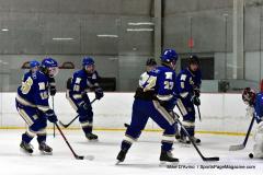 Gallery CIAC Ice Hockey; Northeastern 4 vs. Newtown 3 - Photo # 767