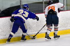 CIAC Ice Hockey; L.H.- H-K, Cogin. 8 vs Newtown 1 - Photo # (1011)