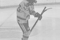 CIACT D3 Ice Hockey; #8 Newtown 7 vs. #9 Wilton 2 - Photo # 044