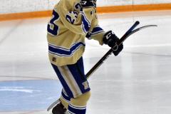 CIACT D3 Ice Hockey; #8 Newtown 7 vs. #9 Wilton 2 - Photo # 045