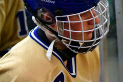 CIACT D3 Ice Hockey; #8 Newtown 7 vs. #9 Wilton 2 - Photo # 1248
