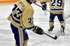 CIACT D3 Ice Hockey; #8 Newtown 7 vs. #9 Wilton 2 - Photo # 196