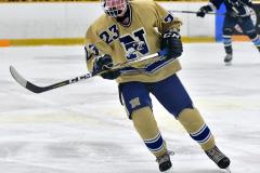 CIACT D3 Ice Hockey; #8 Newtown 7 vs. #9 Wilton 2 - Photo # 1985