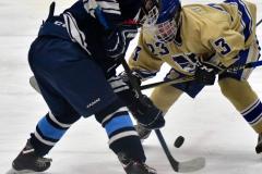 CIACT D3 Ice Hockey; #8 Newtown 7 vs. #9 Wilton 2 - Photo # 2023
