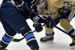 CIACT D3 Ice Hockey; #8 Newtown 7 vs. #9 Wilton 2 - Photo # 2024