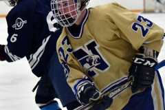 CIACT D3 Ice Hockey; #8 Newtown 7 vs. #9 Wilton 2 - Photo # 2034