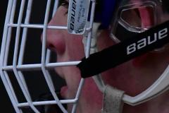 CIACT D3 Ice Hockey; #8 Newtown 7 vs. #9 Wilton 2 - Photo # 2184