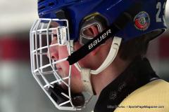 CIACT D3 Ice Hockey; #8 Newtown 7 vs. #9 Wilton 2 - Photo # 293