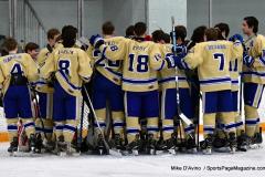 CIACT D3 Ice Hockey; #8 Newtown 7 vs. #9 Wilton 2 - Photo # 508