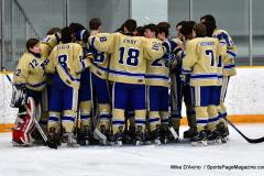 CIACT D3 Ice Hockey; #8 Newtown 7 vs. #9 Wilton 2 - Photo # 514